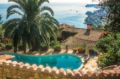 游泳池有棕榈和海视图 免版税库存图片