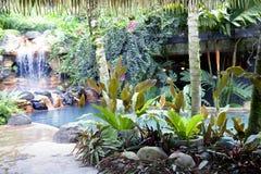 游泳池用瀑布和热的热量水 免版税库存图片