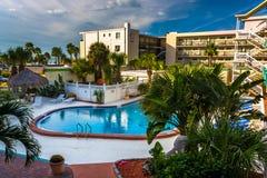游泳池的看法在Clearwater海滩的一家旅馆,小花 图库摄影