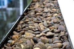 游泳池/庭院堆背景纹理小卵石 免版税库存照片