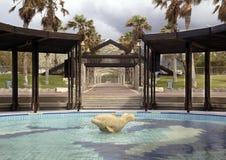 游泳池 免版税图库摄影