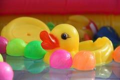 游泳玩具鸭子 免版税图库摄影