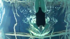 游泳的体育,漂浮在大海水池的女子专业游泳者在训练期间在比赛前 影视素材