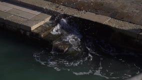 游泳的在海滩的扶手栏杆和台阶海 有导致海的扶手栏杆的台阶 股票视频