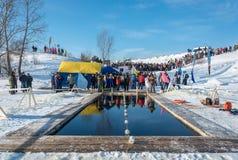 游泳的竞争的一个地方在冬天乐趣的冰冷的水中 免版税库存图片