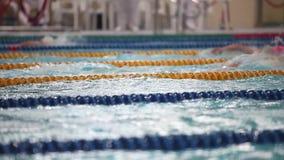 游泳竞争女子自由式 股票录像