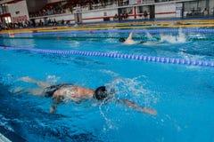 游泳竞争 库存图片