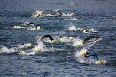游泳者三项全能 免版税图库摄影
