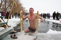 游泳者冬天 免版税库存图片