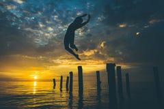 游泳者的剪影 免版税图库摄影