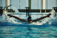 游泳者 库存照片