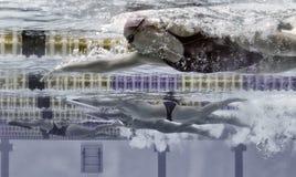游泳者012 库存照片