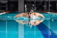 游泳蝶泳的男性游泳者 库存照片