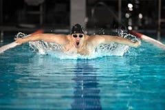 游泳蝶泳的年轻男性游泳者 免版税库存图片