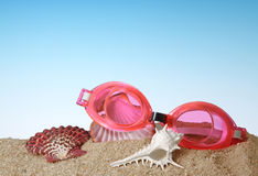游泳风镜特写镜头与贝壳的 免版税库存照片