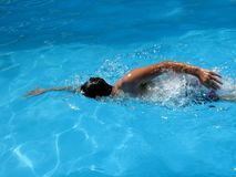 游泳 库存图片
