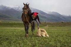 游牧马比赛 库存照片