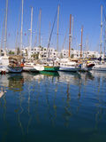 游艇口岸El Kantaoui小游艇船坞突尼斯的反射 库存照片