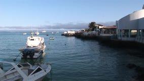 游艇和小船在水表面背景在海岸附近在太平洋 股票视频