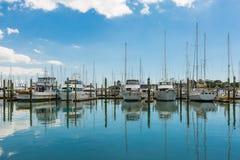 游艇和小船在港口奥克兰新西兰 库存照片