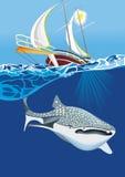 游艇和鲨鱼鲸鱼 免版税图库摄影