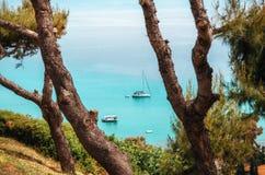 游艇在一个海湾在用清楚的透明天蓝的水 Chalkidiki,希腊 看法通过杉树从上面 免版税库存照片