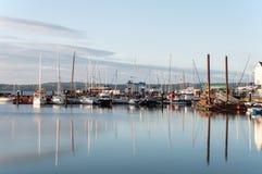 游艇在小游艇船坞在黎明 免版税库存照片