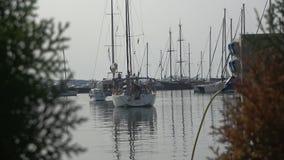 游艇在小游艇船坞 股票录像