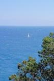 游艇在海运 图库摄影