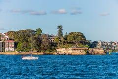 游艇小船航行在悉尼港口 库存照片