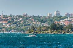 游艇小船航行在悉尼港口 免版税库存图片