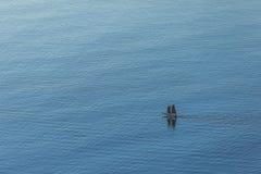 游艇鸟瞰图在海洋的 免版税库存照片