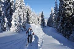 游览在美丽的冬天山的Backcountry滑雪者 库存照片