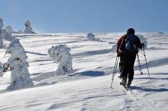 游览在美丽的冬天山的Backcountry滑雪者 免版税图库摄影