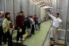 游览在酿酒厂圣丽塔的葡萄园里 库存照片