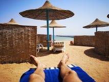 游览夏天埃及 库存照片