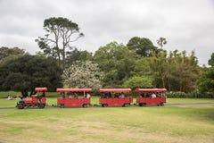 游览火车的植物园 免版税图库摄影