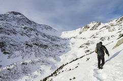 游遍雪的登山家在朱利安阿尔卑斯山 免版税库存图片