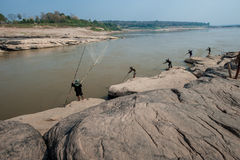 湄公河 库存图片