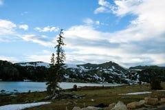 湖、山和杉树 库存图片
