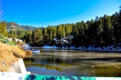 湖、山和树 免版税库存照片