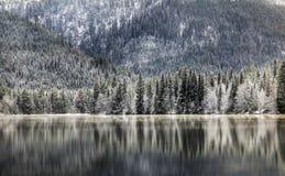 湖、森林和山 免版税库存图片