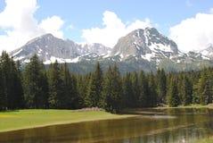 湖、森林和山 免版税库存照片