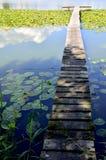 湖、码头和荷花 图库摄影