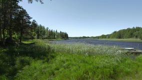 湖与停放的两条小船的海岸线美丽的景色  在绿色树和天空蔚蓝背景的深蓝水表面 股票视频