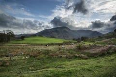 湖与风雨如磐的天空的区风景在乡下anf fie 免版税库存照片