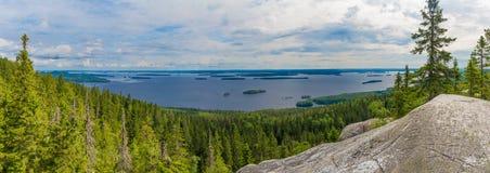 湖全景在芬兰 免版税库存图片