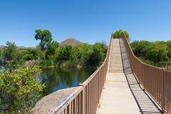 湖公园巴塔哥尼亚状态 免版税库存照片