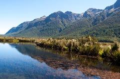 湖冈恩,新西兰 库存照片
