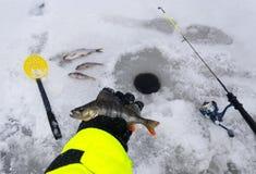 湖冬天捕鱼的时刻 库存图片